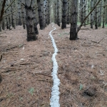 Intervention (Watershed) | site specific installation | unfired clay in abandoned tree farm