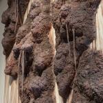 Polyanthroponemia. detail 5. Toni HaPolyanthroponemia | site-specific installation: unfired clay & mixed media | 16ft x 35ft x 12in | Photo credit: Toni Hafkenscheidfkenscheid